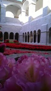 Temps de Flors al Monestir de Sant Daniel